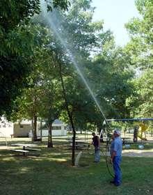 greentree spraying